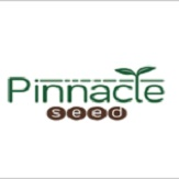 logo pinnacle